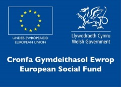 The Apprenticiceship Programmes, led by the Welsh Government , are supported by the European Social Fund